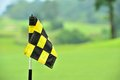 Checkered flag in the golf course Royalty Free Stock Images