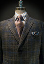 Checkered Jacket, Striped Shirt, Tie (Vertical) Stock Images