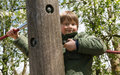 Cheerful blond boy at playground playful peeking around a wooden post outdoor Stock Images