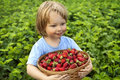 Cheerful boy with basket of berries Royalty Free Stock Photo