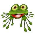 Cheerful Green Frog