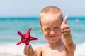 Cheerful and happy boy with starfish Royalty Free Stock Photo