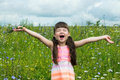 Cheerful little girl rejoices and screaming in a meadow Royalty Free Stock Photo