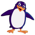 Cheerful penguin Stock Photos