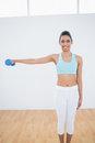 Cheerful slender woman lifting blue dumbbell smiling at camera Stock Image
