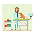 Cheerful veterinary doctor examining dog in vet clinic. Colorful cartoon character Illustration