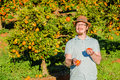 Cheerful young man juggling oranges on citrus farm Royalty Free Stock Photo