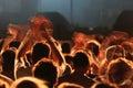Cheering hands in concert