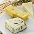 Cheese assortment closeup of a plate with an of such as roquefort emmental or cheddar Royalty Free Stock Photo