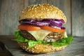 Cheese burger Royalty Free Stock Photo