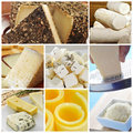 Cheese collage a of pictures of different kind of Royalty Free Stock Photos