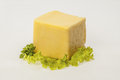 Cheese cube with green leaves Stock Image