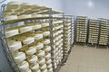 Cheese factory warehouse with shelves of product Royalty Free Stock Photo