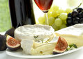 Cheese, grape, figs and wine Royalty Free Stock Image