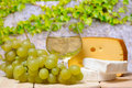 Cheese and grapes outdoor Stock Photos
