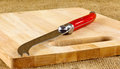 Cheese knife a with a red handle on a wooden board Royalty Free Stock Photo