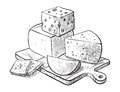 Cheese making various types of cheese set of vector sketches Royalty Free Stock Photo