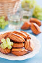 Cheese oat bran madeleines Royalty Free Stock Photography