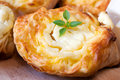 Cheese and pastry tasty baked with melted feta Stock Images