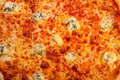 Cheese pizza close up detail macro Stock Photos