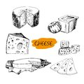 Cheese set of hand drawn graphic illustrations Stock Photos