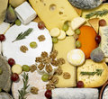 Cheese still life Stock Images