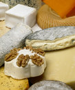 Cheese still life Royalty Free Stock Images