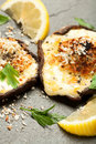 Cheese Stuffed Mushrooms Royalty Free Stock Photo