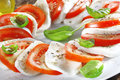 Cheese and tomato salad with herbs Royalty Free Stock Photography