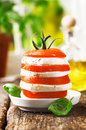Cheese and tomato tower Royalty Free Stock Images