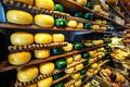Cheese wheels green and yellow colors on wooden shelves at cheesemaking shop. Royalty Free Stock Photo