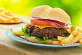 Cheeseburger and fries a delicious grilled in an outdoor picnic barbecue setting Royalty Free Stock Photography