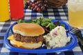 Cheeseburger on a picnic table with potato salad Stock Photo