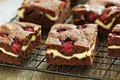 Cheesecake brownies with raspberry on a cooling rack close up Royalty Free Stock Photos