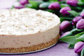 Cheesecake with peanut butter sweet food Royalty Free Stock Images