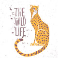 Cheetah color amazing animal with sample text the wild life vector illustration Royalty Free Stock Photo