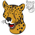 Cheetah Face Royalty Free Stock Photo