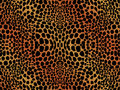 Cheetah or leopard skin design Stock Photo