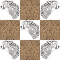 Cheetah patterns for textiles and wallpaper illustration of a cheetahs head cheetahs fur Royalty Free Stock Image