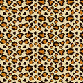 Cheetah skin Royalty Free Stock Photo