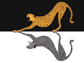 Cheetah tiger Royalty Free Stock Photo