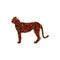 Cheetah wildcat color silhouette animal