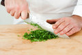 Chef chopping tarragon on wodden board Stock Photos