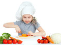Chef girl preparing healthy food and feeding pet Royalty Free Stock Image