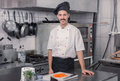 Chef posing, looking at camera, commercial kitchen Royalty Free Stock Photo