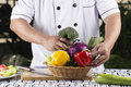 Chef prepared fresh vegetables Royalty Free Stock Photo