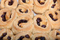 Chelsea buns closeup of freshly baked with raisins fillings Royalty Free Stock Photo