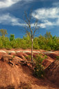 Cheltenham badlands sunny day in ontario canada Stock Images