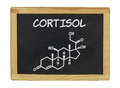 Chemical formula of cortisol on a chalkboard blackboard Royalty Free Stock Photo
