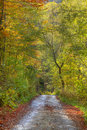 Chemin d'automne Photos stock